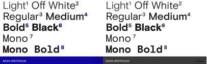 Basis Grotesque by @colophonfoundry: it comes with 6 weights + italics' and the monospaced version comes with 2 weights + italics.