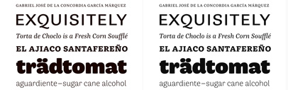 César Puertas structured his unique series into six styles with distinct but matching flavors: grotesque' rounded' slab-serif and transitional — all based on the same skeleton but with different finishing.