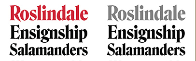 Join @djrrb's Font of the Month Club! June's font of the month is Roslindale.