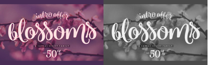 Blossoms by Fenotype. 50% off until Sep 22.