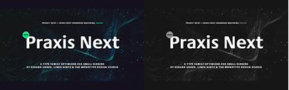 Praxis Next by Gerard Unger and Linda Hintz. 75% off for a limited time.