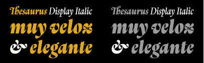 @typotheque released Thesaurus Display Italic designed by @fermin_guerrero.