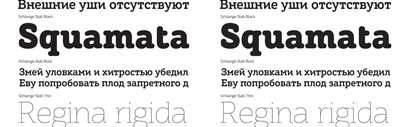 Schlange Sans and Schlange Slab' rounded typefaces' by Art. Lebedev Studio