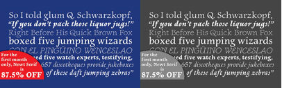 Newt Serif by Nathanael Bonnell. It's 87½ % off now. The offer Ends April 24 at 1:00 PM.