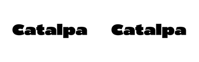 Type Together released Catalpa.
