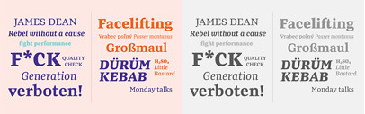 Preto Serif by DizajnDesign. Introductory offer 50% off till June 14th.
