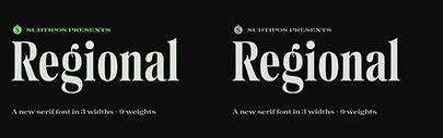 Sudtipos released Regional. It comes in 27 styles + 1 variable font.