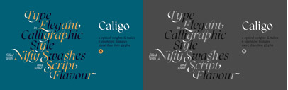 Caligo is a typeface based on calligraphy done with a parallel pen. It's classic and elegant with a modern twist' featuring flared serifs' lots of ligatures and swashes.