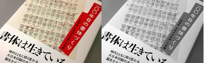"DNP has published a book on ""the project to renew Shueitai for the Heisei era"" — 7 years development of ""Shueitai"" including 10 fonts and 120'000+ characters. This book is available through major books stores in Japan and its e-book version is for free at ""honto"" until the end of November."