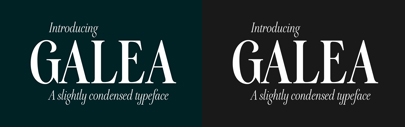Galea is a slightly condensed serif typeface with long extenders. Designed by @bellera