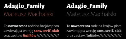 Adagio by @borutta1: it consists of Sans' Serif' and Slab. Each of them has 9 weights and corresponding italics.