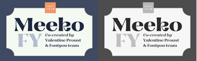 Meeko FY' a singular display type with high contrasted and friendly flared shapes